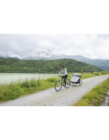 Wózek wielofunkcyjny / przyczepka rowerowa TFK Joggster Velo